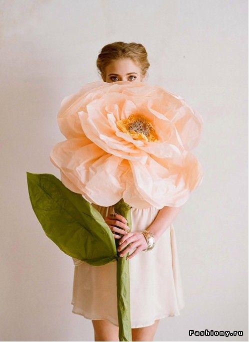 Гигантские цветы из бумаги / цветочки из бумаги