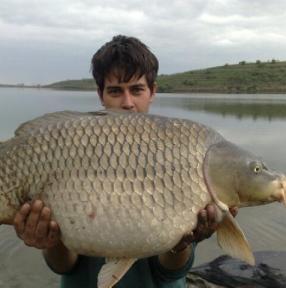 Danube Delta Fish