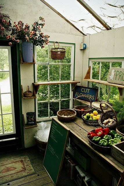 10 Easy Potting Shed renovated ideas for your backyard outdoor space