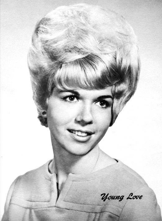 style of hair for 559 best 19010 remembered bouffant amp updo styles images 4695