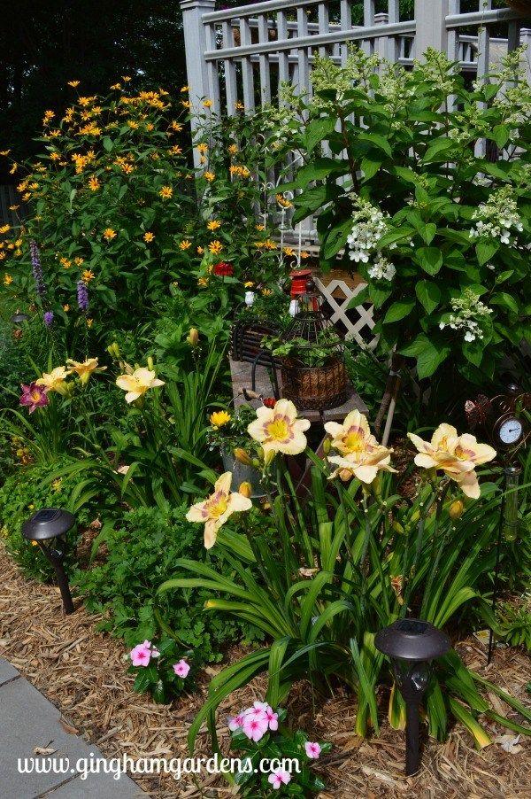 July flower garden tour pinterest gardens flower and garden ideas mightylinksfo