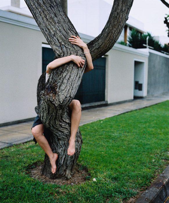 tree hugger by Will Sanders