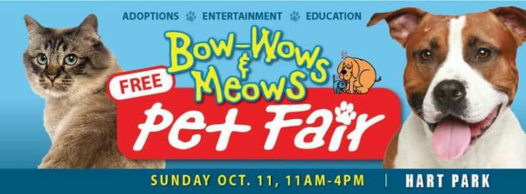 Mark your calendars!!! Bow-Wows & Meows, Inc Pet Fair! Sunday, October 11th • Low cost adoptions • Low cost DOGGIE vaccinations • Photo Opportunities with your pets • Entertainment • Food • and MORE!  Excited to say... THIS YEAR, Parking is $$FREE!$$ Thanks to our parking sponsor, Ingolstadt West the best shop in the San Fernando Valley, Great Mechanics who also happen to be animal lovers <3 Thanks guys! www.BowWowsAndMeows.org