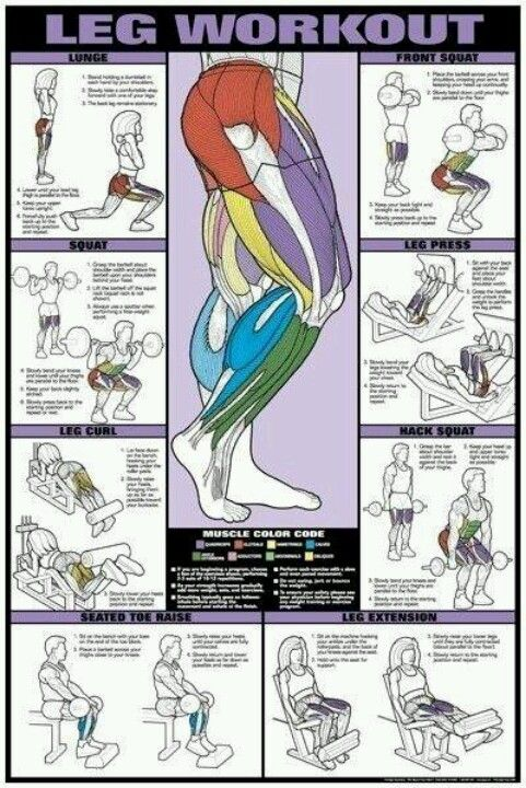 #leg #workout I like these for reference in the gym