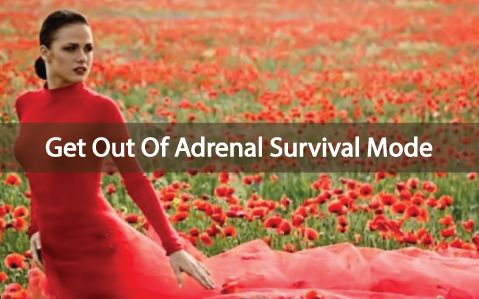 Do you know that your adrenal glands are connected to your 'fight or flight' mechanism? If you suffer from thyroid disease, learn how adrenal....  Do you feel like you are in Fight or Flight mode???  Ƹ̵̡Ӝ̵̨̄Ʒ  Learn steps of getting out of Adrenal & Thyroid Fatigue, here  ▼  http://thyroidnation.com/fight-or-flight-rescuing-yourself-from-adrenal-fatigue/  #Thyroid #Fatigue