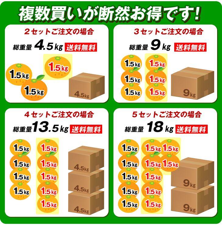 食品 みかん 【超お買得】 熊本県 みかん 1.5kg  送料無料 2セット目から増量あり   国華園オンラインショップ