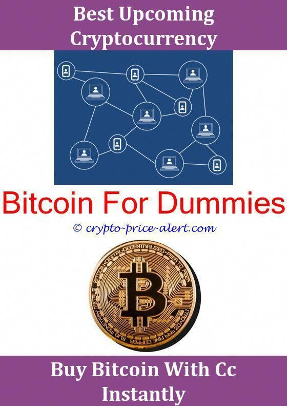 Bitcoin Founder How Many Dollars Is 1 To Trade Price Wiki Vs Gold Chart Inf Yay Free Bitcoins Really