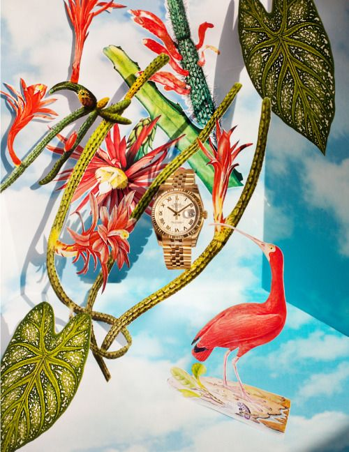 Still Life photography for Monogram Mag Poland Ada Gruszka...  Still Life photography for Monogram Mag Poland Ada Gruszka & Taleksandra Smolińska #stillifephotography #fotografiaproduktowa #rolex #editorial #polishmagazine #luxury #luxuryphotography #fairytale #photographypoland #lovephotography #design