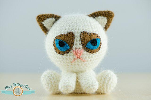 Grumpy Cat – Pisica Morocănoasă
