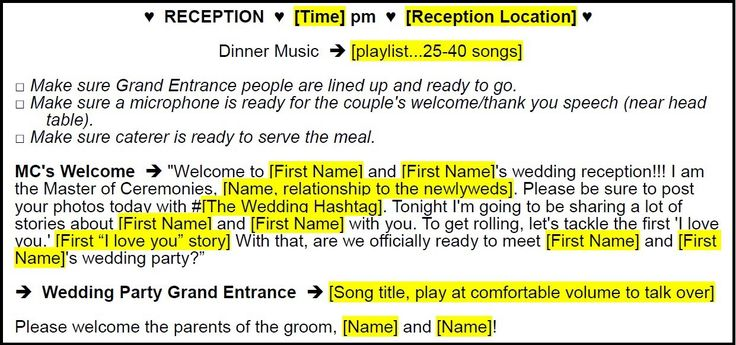 Complete Wedding MC Script (25 pages) – Includes 7 Real DJ Staci Wedding Timeline-Scripts and a Fill-In-the-Blanks Wedding MC …