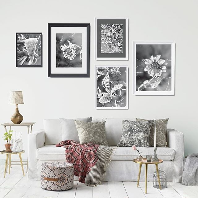 Glimpses of natural beauty minimal in colors rich in details  . . . . Visit Black and White Prints section  #gallerywall#gallerywalls#colorless #nocolor #printables #instantdownload #digitalprints #wallart #myhouzz#uohome #anthrohome#theeverygirlathome #homeswithheart#showmehowyoustyle #interiorstyling  #livecolorfully #artforthehome #hotelart #atmine #apartmenttherapy#ambularinteriorsaintgotnothingonme #currentdesignsituation #cozyspaces #stylishhome #homedecorations #decorinspirations…