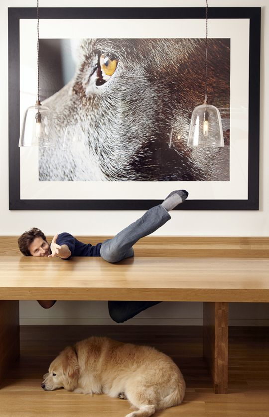 15 Examples of Decorating with Large Scale Photos: Bradley Cooper's Dog in his Kitchen