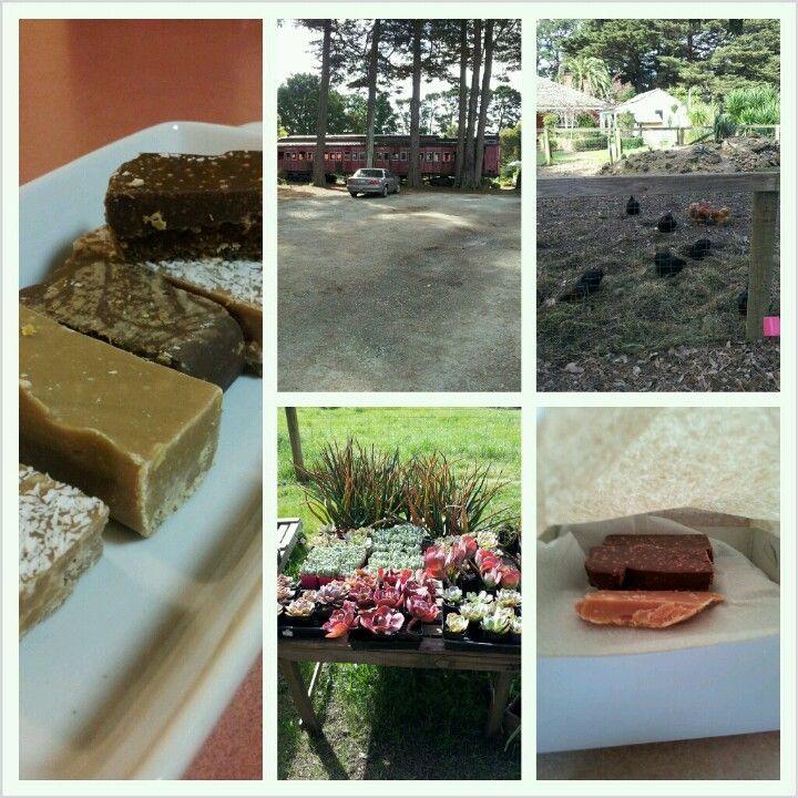 The home of amazing homemade fudge, fresh vegies and sweet succulents near Somerville, Mornington Peninsula Victoria