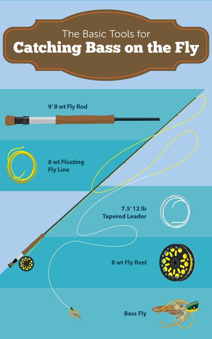 Best 20 fishing for bass ideas on pinterest bass for Bass fishing kit