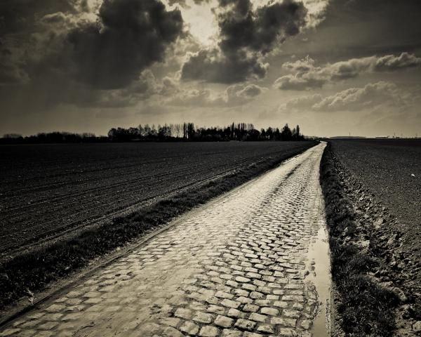 #ParisRoubaix The cobbles of the Carrefour de l'Arbre were once again decisive.