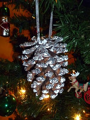 Homemade Christmas.  Ornament. I did this in North Carolina, I swear, THE BIGGEST pine cones everrrr! Raeford, NC and fort Bragg...