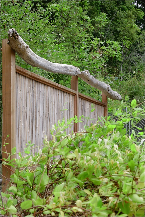bamboo privacy fence with driftwood