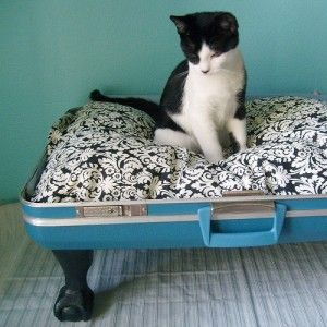 How clever and cute! Retro Mod Suitcase Pet Bed - DIY: Turn your tired Samsonite into a funky pet bed.