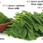 "Due to its numerous virtues, this green plant, the Moringa tree, is also called the ""miracle tree"". Although it is very popular in India, parts of Africa, the Philippines and several other countries, yet it is relatively unknown in countries such as..."