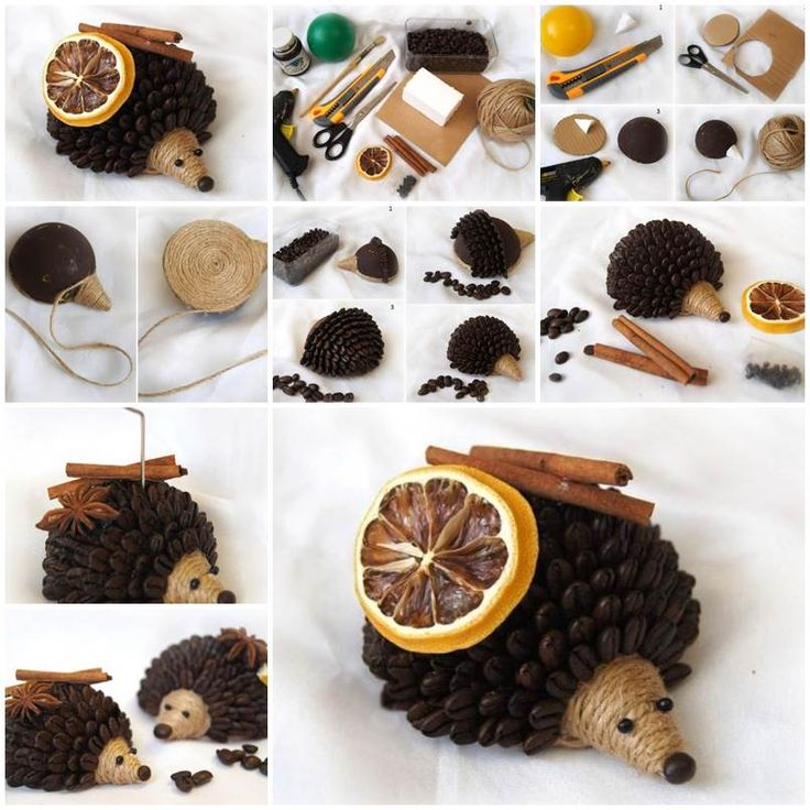DIY Coffee Bean Hedgehog  https://www.facebook.com/icreativeideas