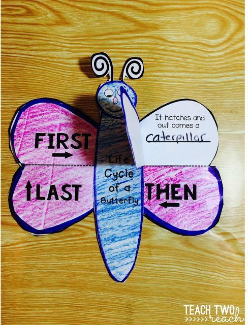 Fun activities and crafts to learn about the butterfly life cycle. Two projects, posters, and sequence printables. Freebie included