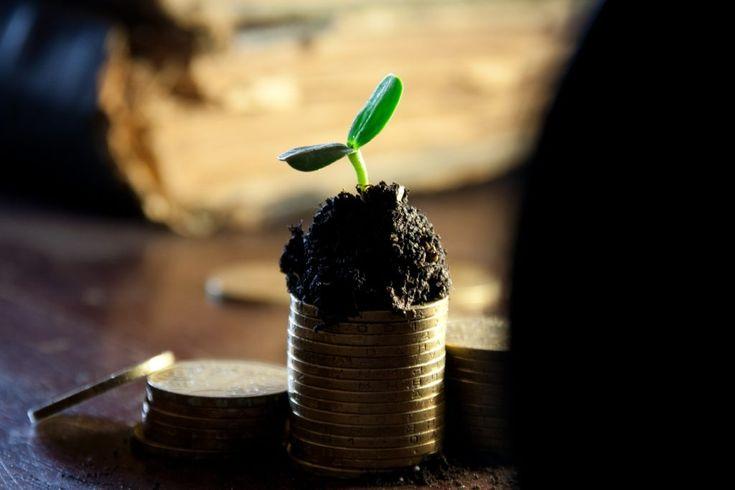 Kann ein bedingungsloses Grundeinkommen funktionieren? Auf politischer Ebene existieren immer wieder Themen, welche zwar nicht in die Praxis (bisher) umgesetzt