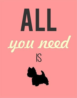 All you need westie print