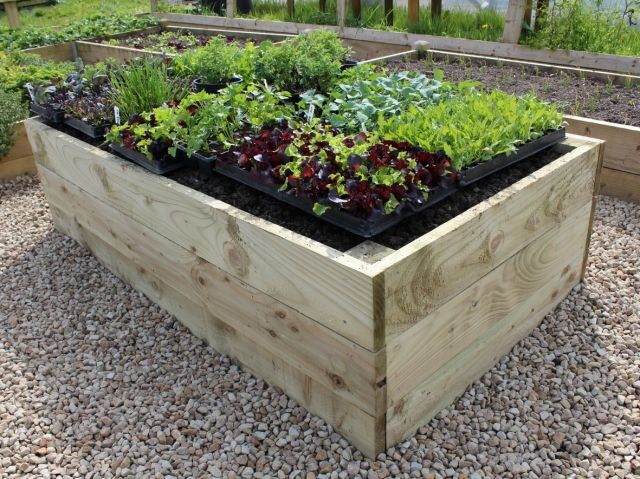 Best 25 Raised Bed Kits Ideas On Pinterest Raised