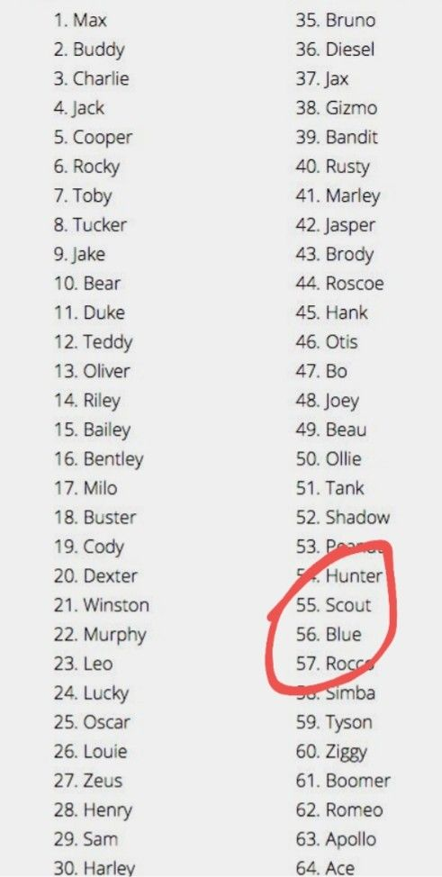 Hey Your Kid S Name Made It On The Top 100 Male Dog Names Dog Names Dog Names Male Puppy Names