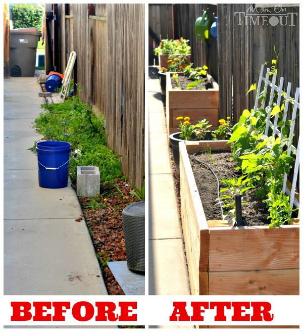 Side Yard Vegetable Garden Small Space Solutions Yard