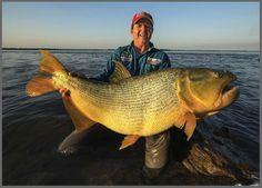 Pescaria de dourado