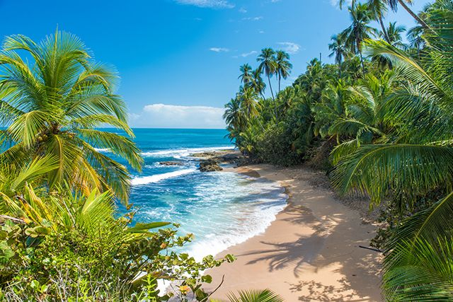 Playa Manzanillo à Puerto Viejo, Costa Rica.