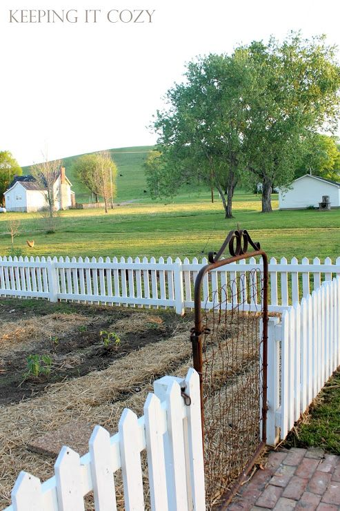 Garden Fencing Ideas keeping it cozy love this wonder if we could do this with all of the Keeping It Cozy Love This Wonder If We Could Do This With All Of The