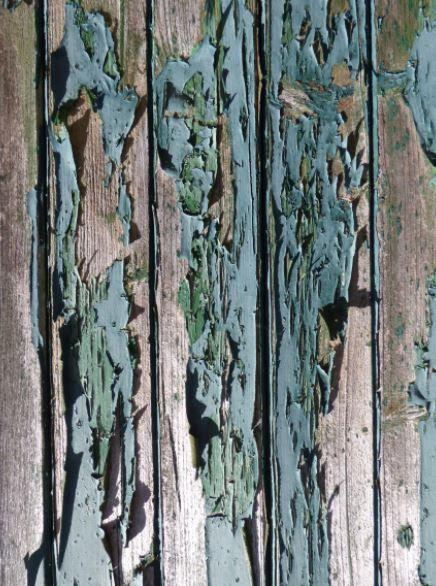 Abblätternde Farbe an alter Stalltür, Foto: S. Hopp                                                                                                                                                                                 Mehr
