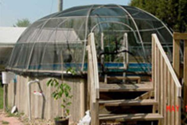 Pool Igloo Above Ground Pool Enclosure Pool Landscaping Above