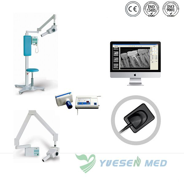 Digital Dental X Ray Sensor Rvg Instrument Ysden 500 Dental X Ray Sensor