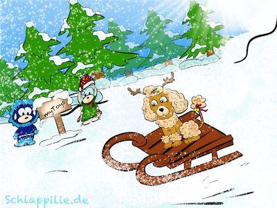 Uuuuuund es geht rasant den Berg hinab - noch besser mit dem aktuellen myToys Schlitten-Gutschein ;) http://www.schlappilie.de/mytoys-gutschein-und-schlittenspecial/