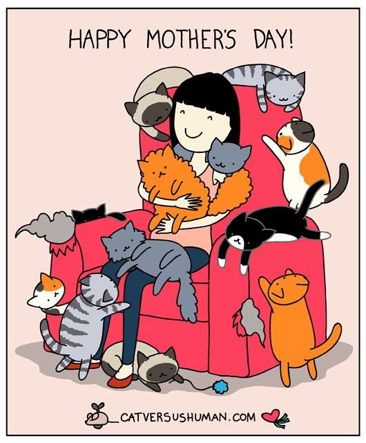To Moms & Cat Ladies!! ❤️ Happy Mother's Day!!