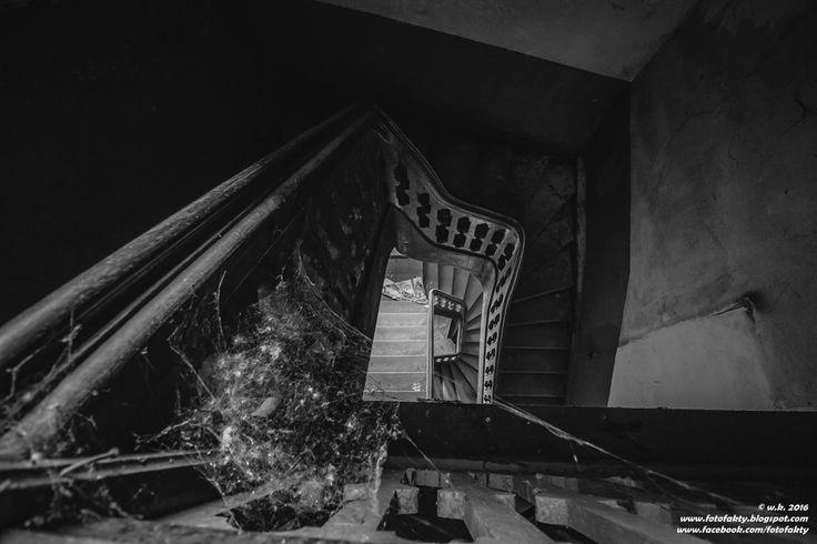 FotoFakty   Wioletta Kozłowska: Pałac w Karczewie