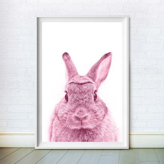 Rabbit Pink Print Bunny Photo Rabbit Wall Decor Woodlands