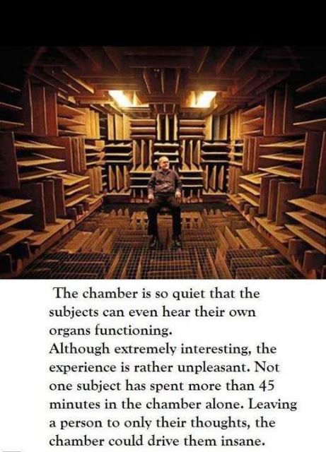 Krisdow Media: Anechoic chamber : Earth's quietest place at Orfie...