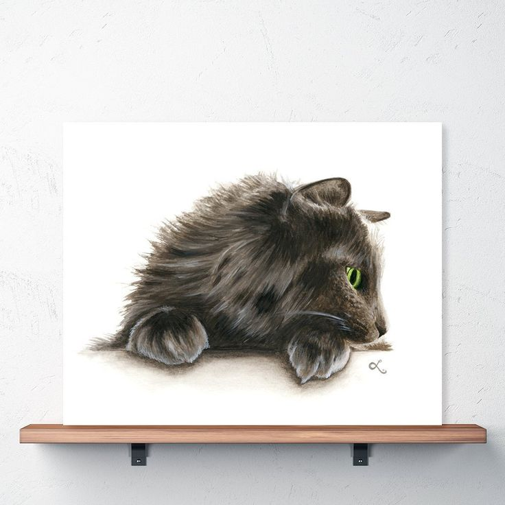 Norwegian Forest Cat Watercolor Print. This is a print of a watercolor painting I made of my fluffy little buddy. Norwegian Forest cats are incredibly handsome long-haired cats, with as much personality as poofiness. • This is an archival quality reproduction of an original watercolor painting • Print is professionally reproduced on thick art paper • Available in 2 sizes: 8 x 10 inches or 11 x 14 inches • Frame not included.