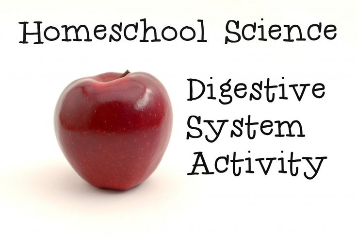 This activity is all about going through the motions of the digestive system. It's perfect for demonstrating an important part of the human body and well-suited for all of the kinesthetic learners out there!