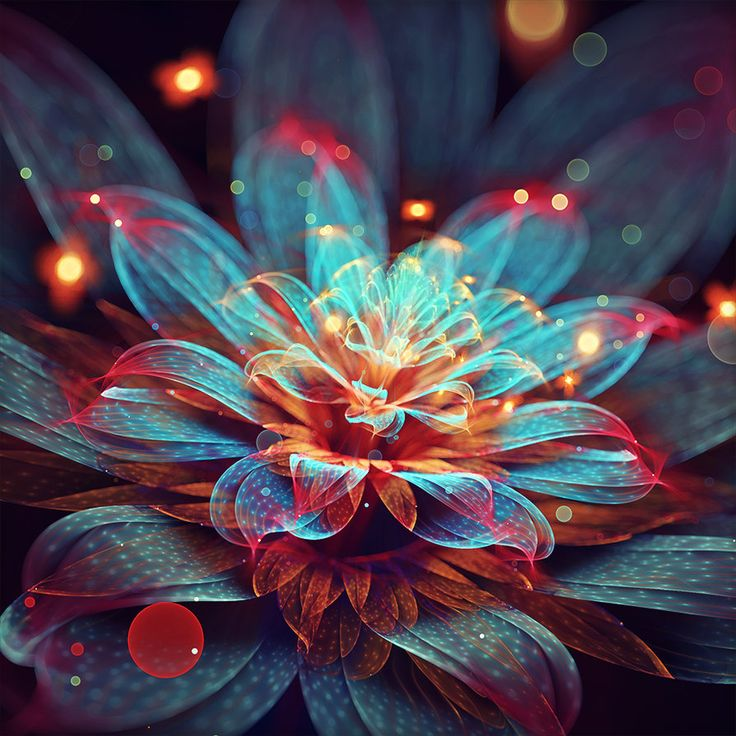 Blooming flame by fractist on DeviantArt