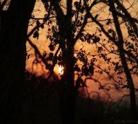 bernardfavrephotos.com couché de soleil