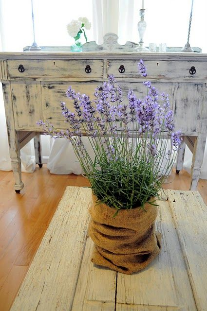 or burlap pots of lavender, rosemary grasses or seasonal stuff outside the front door, even a small redwood or green tree at Christmas that will get planted somewhere after wards..for outside the front door-