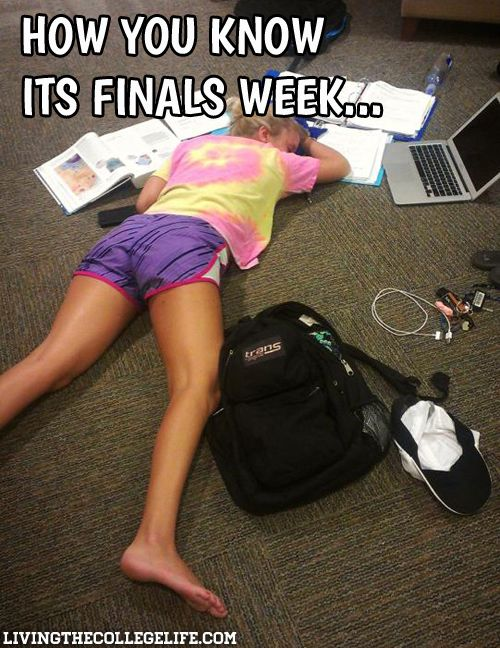 Hilarious College Meme Compilation: Part 4 (31 Photos)