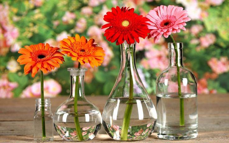 Maak je vazen en flessen glashelder schoon met deze indrukwekkende truc, super makkelijk!