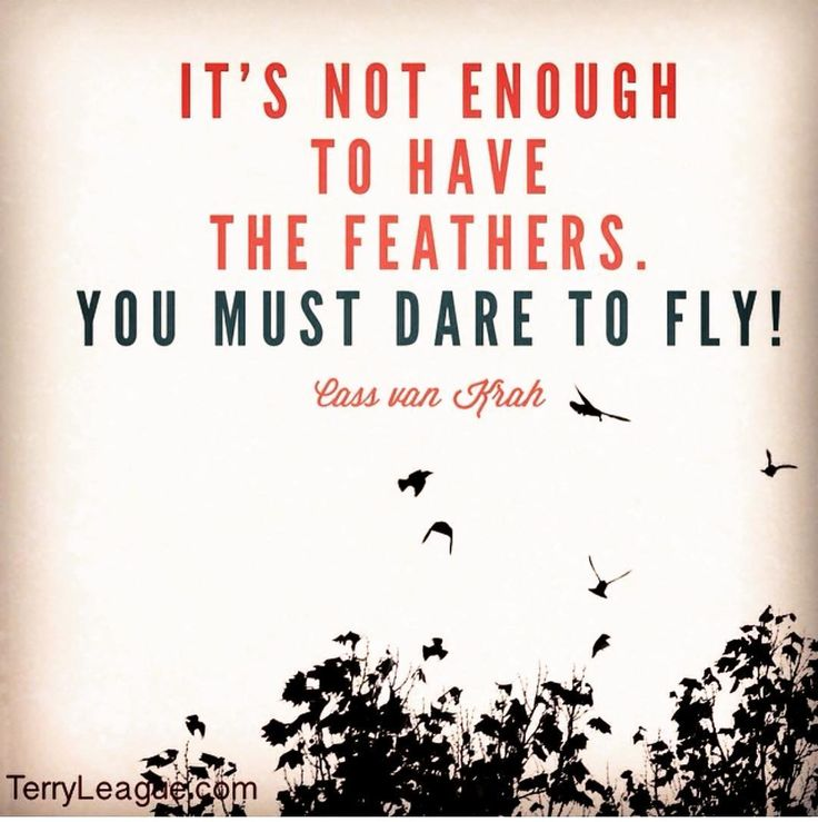 """""""It's not enough to have the feathers. You must dare to fly."""" #quote #terryleague"""