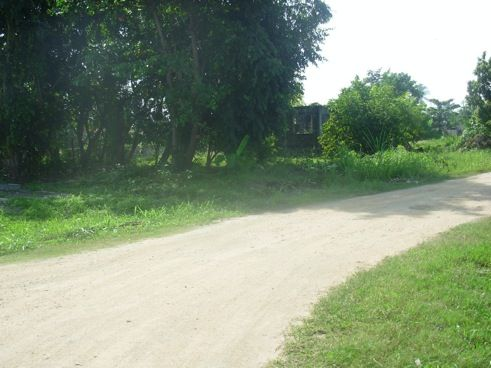 Cheap homes in Belize | Listed as: CHEAP Lot for Sale in Corozal Town Listing ID: 156